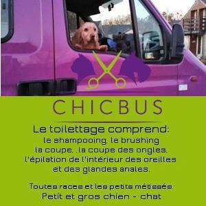 Prestation complete en toilettage canin et féline - Chicbus - Maville 44260 et Ancenis 44150