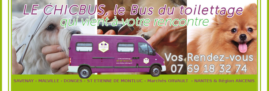 diapo1-chicbus-toilettage-a-domicile-itinerant-maleville-44260-savenay-donges-44480-nantes-orvault.jpg